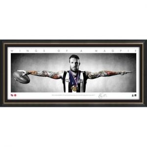 Dane Swan Mini Wings Framed