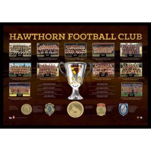 Hawthorn FC – The Historical Series Print